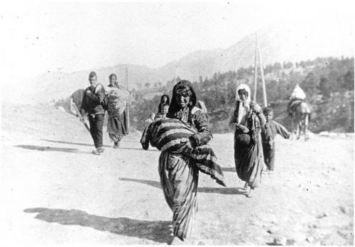 L'intenzione di sbarazzarsi degli armeni in Anatolia era parte  di un progetto demografico e di ingegneria sociale dei Giovani Turchi