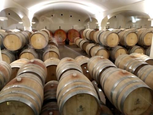 Cantine Umberto Cesari: la bottaia su 2000 metri quadri raccoglie oltre 600 Botti e in questo ambiente perfetto e rarefatto i turisti del vino possono fare degustazioni.