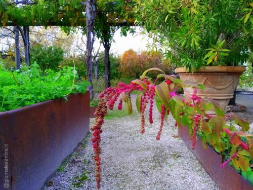Villa Amagioia si trova all'interno del Parco di Palazzo di Varignana (foto cperer)