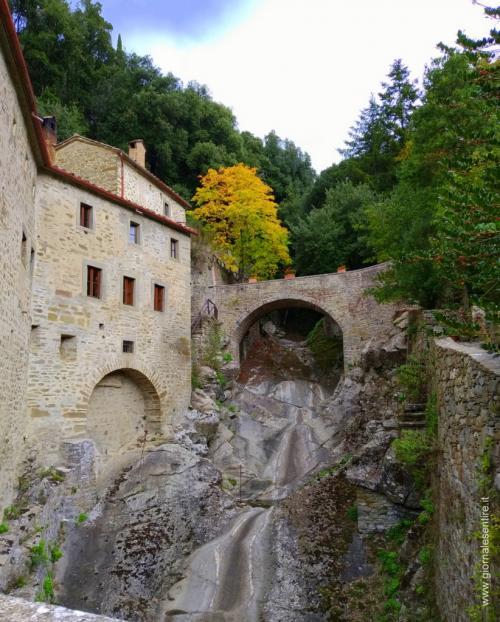 il torrente, sorella Acqua  (foto cperer)
