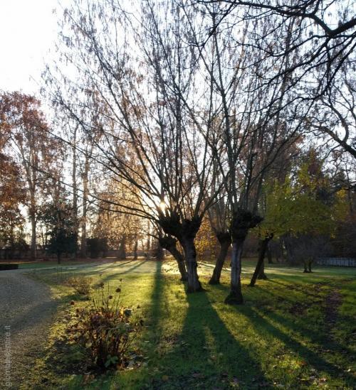 Il meraviglioso parco con alberi secolari