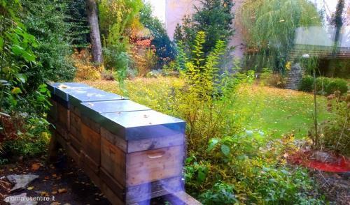 Nel giardino dell'hotel le arnie: il miele è di produzione propria
