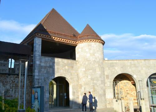 Il Castello di Lubiana non è mai stata residenza per un re, ma fu costruito per questo
