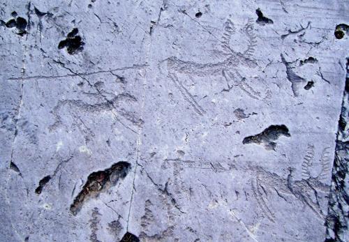 Le scritture rupestri della Valcamonica