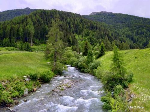 Le praterie e le acque sono il tratto distintivo del territorio (foto c.perer)