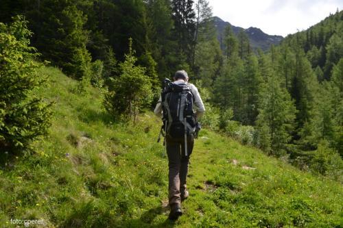 L'ufficio Turistico di Moso può programmare visite con guida, il modo migliore per apprezzare l'habitat (foto c.perer)