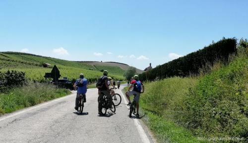 Si pedala tra i vitigni di Arneis, Nebbiolo e Moscato attraversando un ecosistema straordinario, riconosciuto e tutelato dall'Unesco