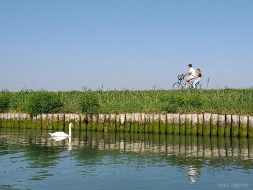 Pedalare in bicicletta: uno dei piaceri di una vacanza a Caorle