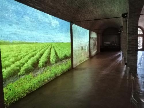 Il museo allestito a Ca' Corniani racconta la storia delle bonifiche