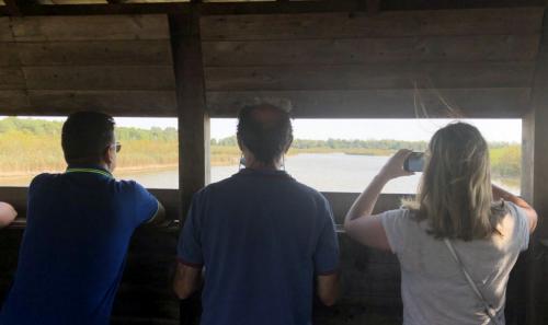 Nelle zone umide sono stati creati anche punti di osservazione per il birdwatching