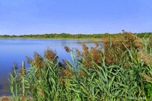 Il bacino di raccolta è artificiale, ma è divenuto Natura nel senso più pieno del termine