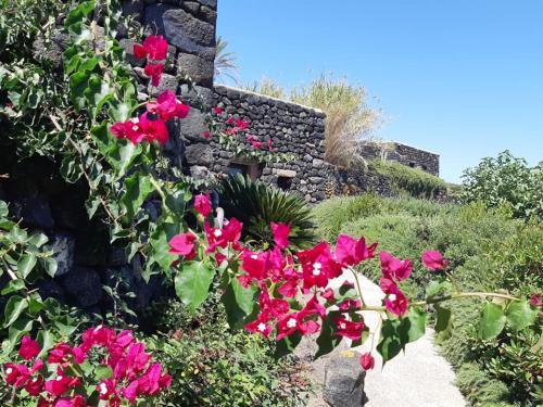 l'Agriresort LE BALLUTE si trova a Pantelleria