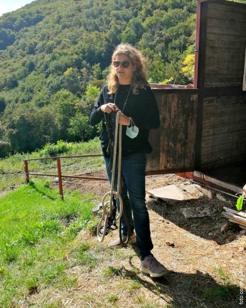 Silvia Allegri, giornalista, blogger ed esperta di asini