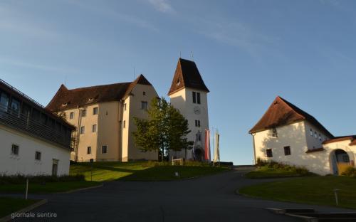 Lo Schloss Seggau  è stata la sede di rappresentanza dei Vescovi della Stiria fino al 1786, poi loro residenza estiva fino al XX secolo. Ha dato per secolilavoro a tutta la regione