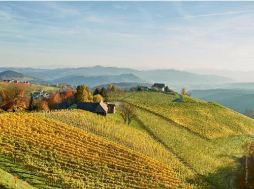 Lo Steiermark è la regione agricola più montuosa dell'Austria. Qui le strade salgono, scendono: non a caso la chiamano la Toscana d'Austria