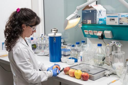Il sistema immunitario ''confonde'' la mela con il polline della betulla