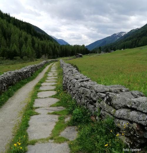 Il sentiero della Via Crucis da Casere verso St. Jacob  - foto C.Perer