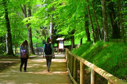 Passeggiare nel Parco, gioia per l'anima (Foto: C.Perer)