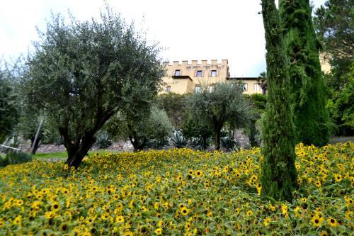 Le immagini di questa pagina sono di www.giornalesentire.it