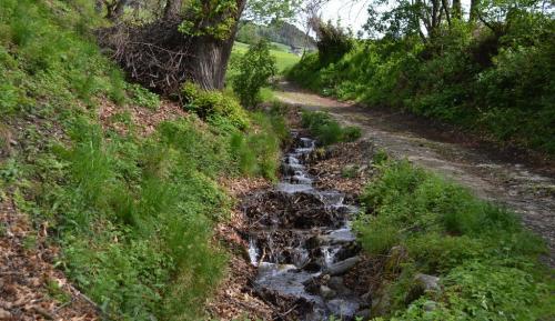 Kneipp naturale: risalendo un torrentello a piedi scalzi