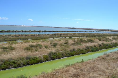 Casa di Ramsar Trinitapoli