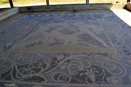 Preziosi mosaici sono stati rinvenuti nelle domus