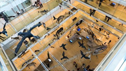 Il vuoto creato da Renzo Piano