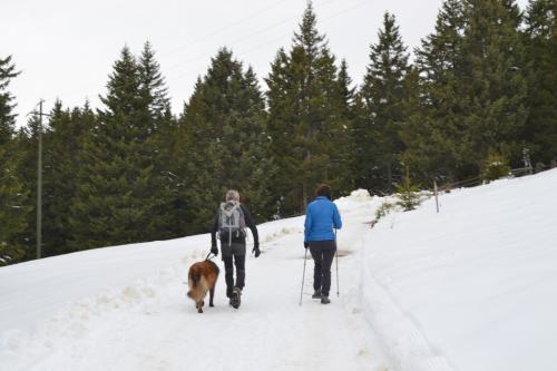 e d'inverno....passeggiata sul Monte San Vigilio