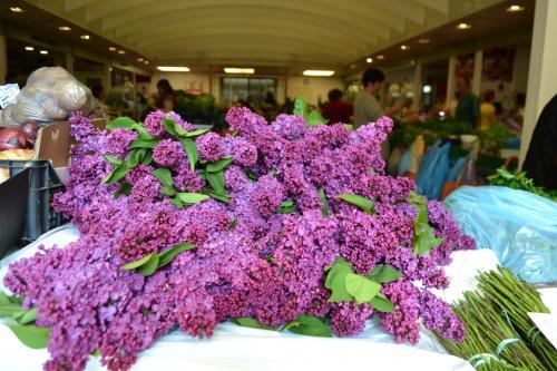 Al mercato coperto non solo verdure, ma anche tanti fiori: lillà, calle, iris (foto C.Perer)