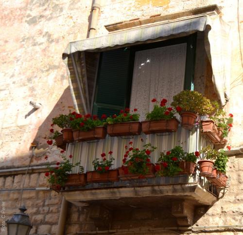 Nei vicoli di Trani a pochi passi dal quartiere ebraico