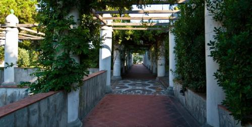 I giardini interni di Villa Arbusto, paradiso botanico
