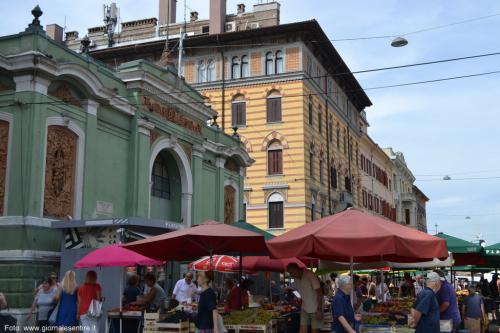 I mercati di Rijeka, uno spettacolo da non perdere - foto C.Perer
