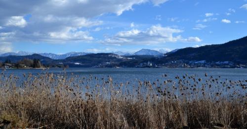 la baia orientale del lago Wörthersee, uno dei più bei laghi austriaci sui quali la città è affacciata