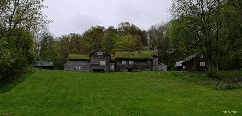 Antico insediamento vichingo a Bergen