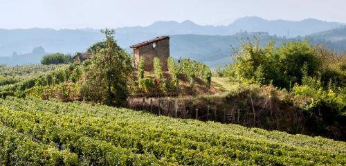 I paesaggi del Roero, patrimonio Unesco