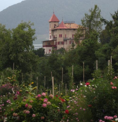 In Trentino i meleti sono come giardini - foto www.giornalesentire.it