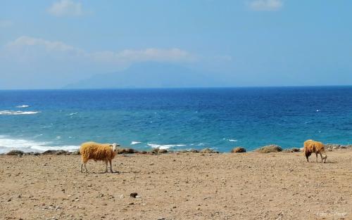 verso Finiki, costa occidentale - foto: www.giornalesentire.it