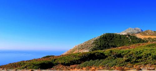 montagne rasate verso il mare, piene di foreste all'interno - foto: www.giornalesentire.it